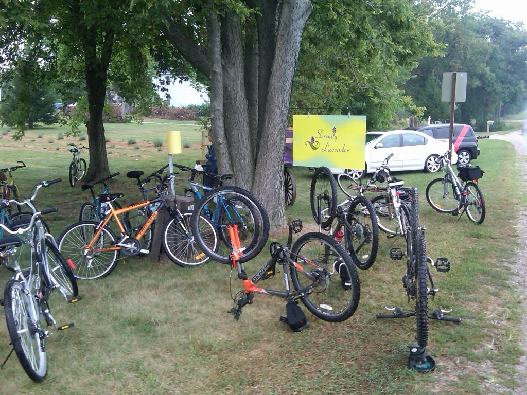 Bikes are gathered outside of Serenity Lavender Farm on the Wine Trail Ride