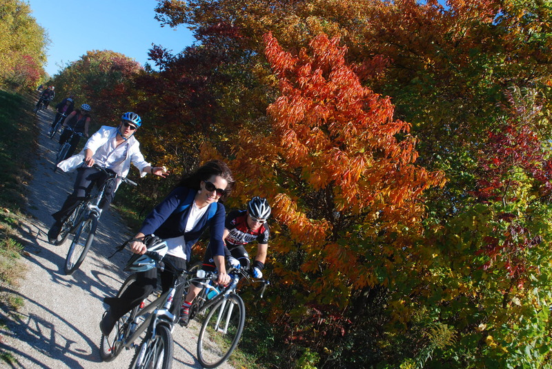 Participants on the Wine Trail Ride enjoy Autumns changing colours along the Chrysler Greenway Trail