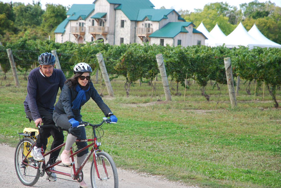 Taking in the scenery on one of WindsorEats's Wine Trail Rides