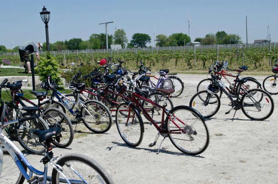 Bikes from Wine Trail Ride participants park during a visit to a local winery