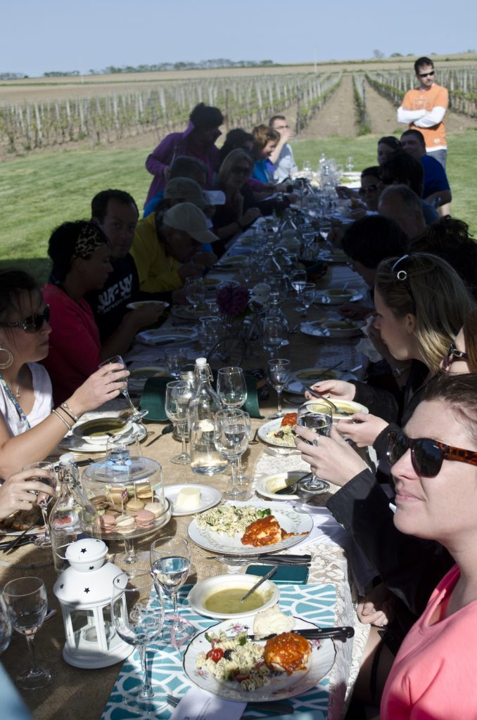 Wine Trail Ride cycling tours in the Essex Pelee Island Coast wine region