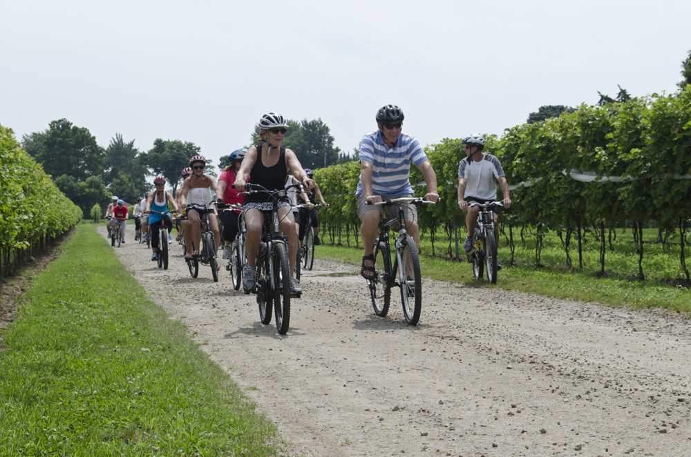 Wine Trail Ride cycling tour in Windsor-Essex, Ontario