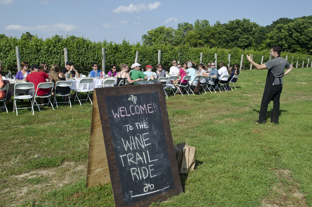 Wine Trail Ride cycling tour's long table dinner in the vineyard