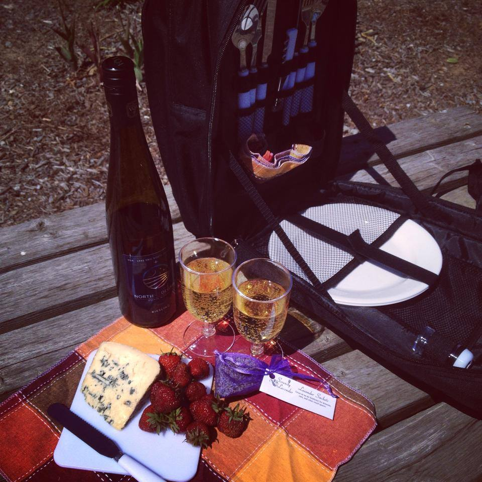 Picnic Carriers for a self-guided Wine Trail Ride