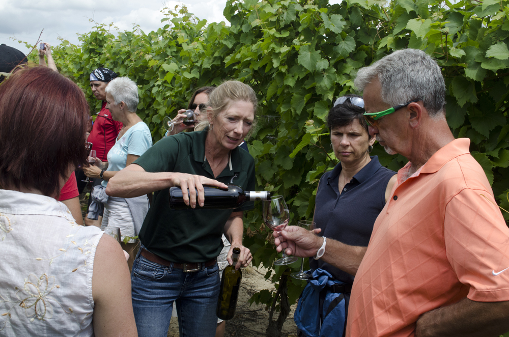 Alma Hollingshead serves some of her award winning wines at Erie Shore Vineyard