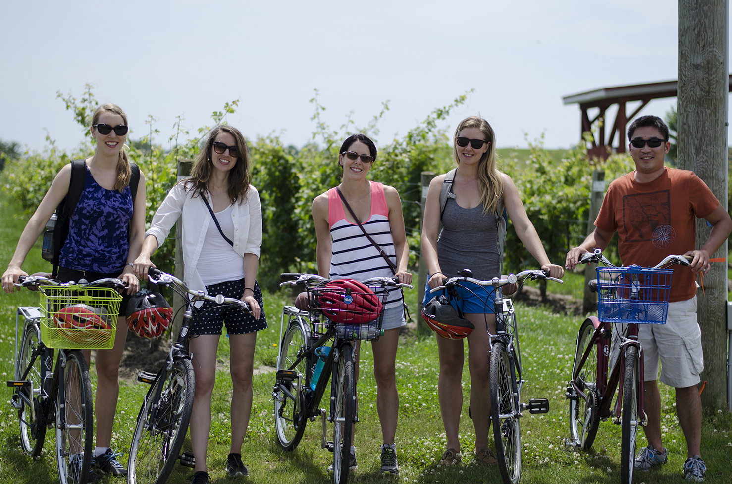 Enjoy a Wine Trail Ride Cycling Tour