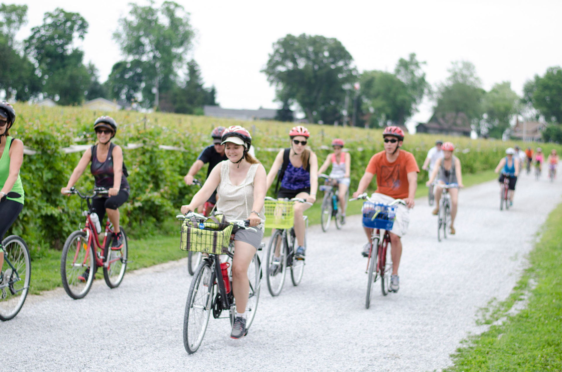 Enjoy the only award winning winery bicycle tour in Windsor-Essex on the Wine Trail Ride.