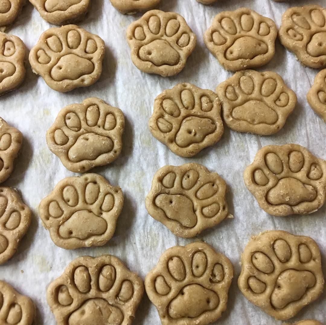 All natural dog treats from Pawsitively A Dog Thing in Windsor, Ontario.