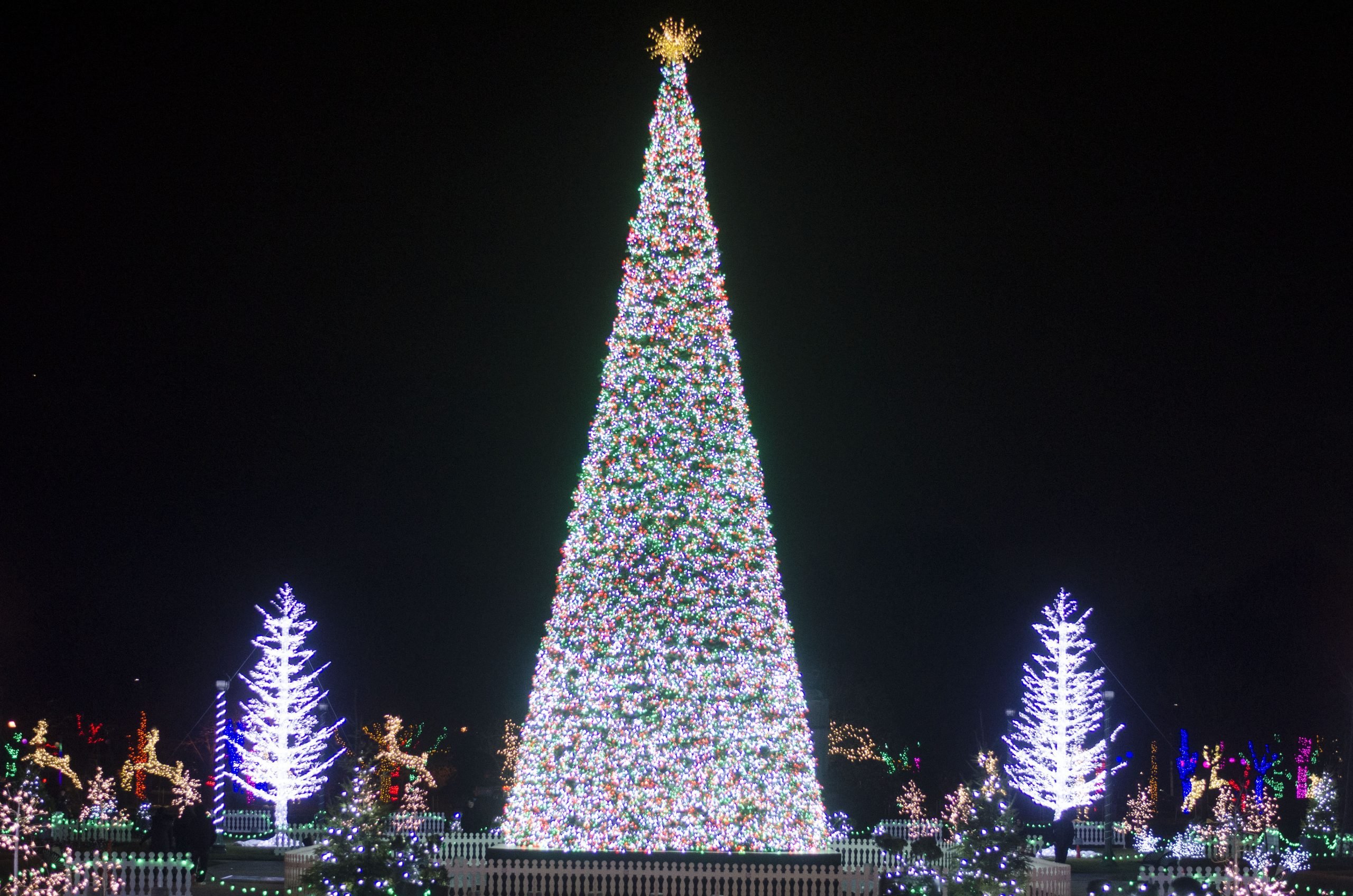 The giant Christmas Tree at Bright Lights Windsor in Windsor, Ontario.
